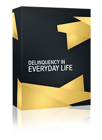 Delinquency in everyday life